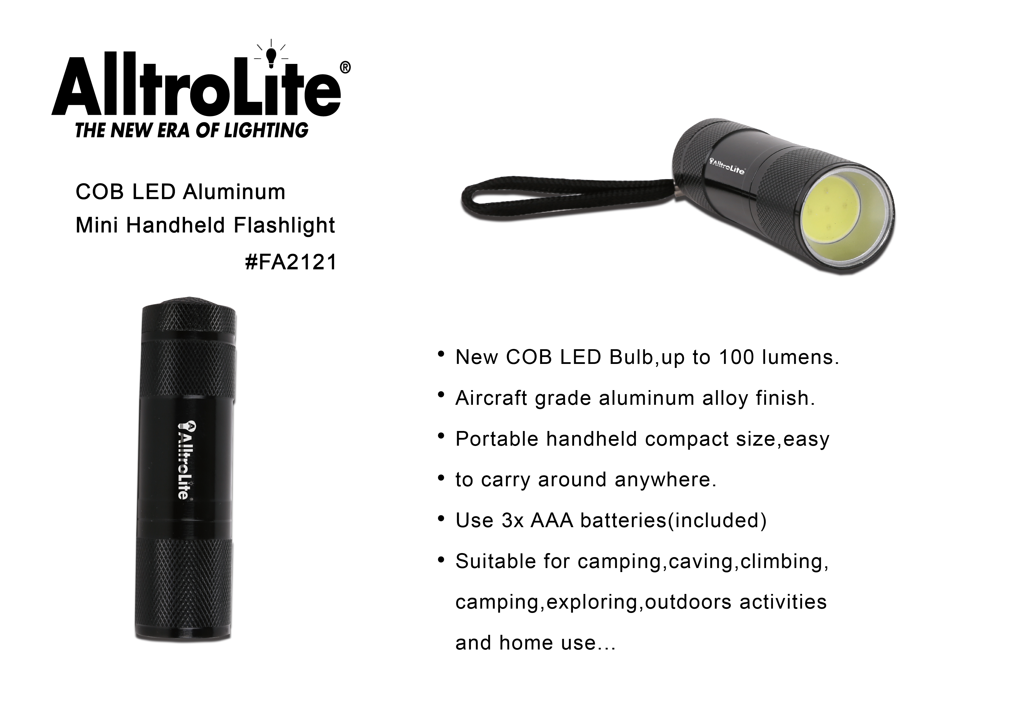 Basic Handheld COB Light (FA2121)